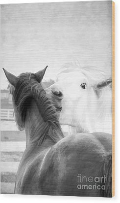 Telling Secrets In Black And White Wood Print by Darren Fisher