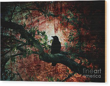 Tempting Fate Wood Print by Andrew Paranavitana