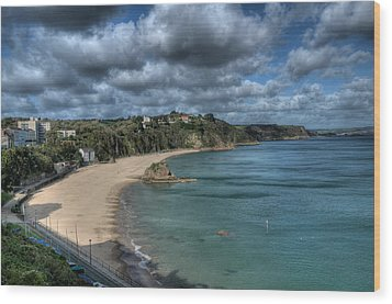 Wood Print featuring the photograph Tenby North Beach Pembrokeshire  by Steve Purnell