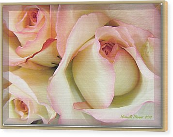 Tenderdly  Rose Wood Print by Danielle  Parent