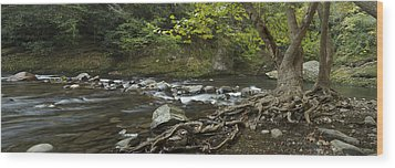 Tennessee Stream Panorama 6045 6 Wood Print by Michael Peychich