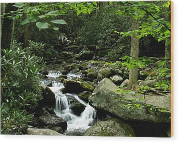 Tennessee Waterfall Wood Print by Glenn Lawrence