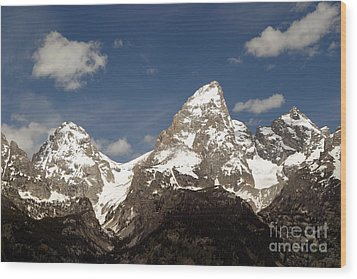 Wood Print featuring the photograph Teton Tips by Living Color Photography Lorraine Lynch