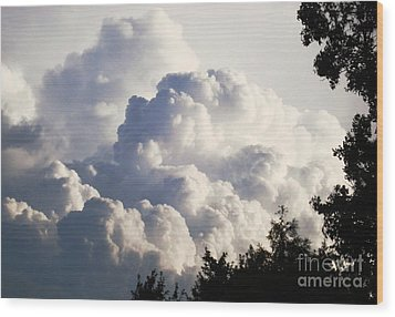 Texas Afternoon Sky Wood Print by Denise Hopkins