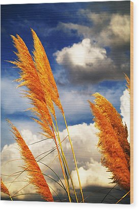 Texas Breeze Wood Print