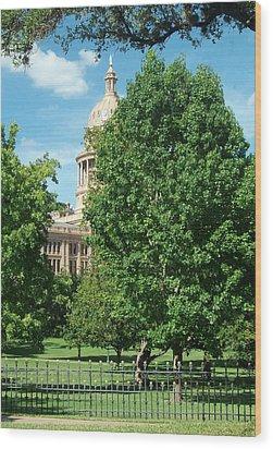Texas Capitol Building In Austin Wood Print by Elizabeth Sullivan