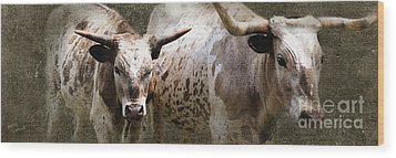 Texas Longhorns Wood Print by Betty LaRue