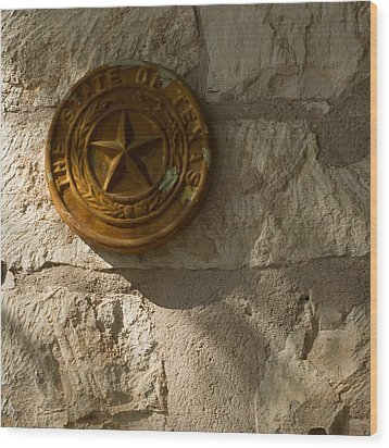 Texas State Seal Wood Print by Michael Flood