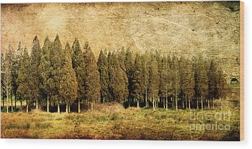 Textured Trees Wood Print