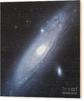The Andromeda Galaxy Wood Print by Charles Shahar