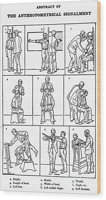 The Anthropometrical Signalment, 1896 Wood Print by Science Source