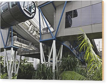 The Area Below The Capsules Of The Singapore Flyer Wood Print by Ashish Agarwal