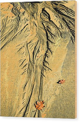 The Art Of Beach Sand Wood Print by Marcia Lee Jones