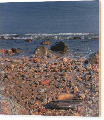 The Beach Wood Print by David Hahn