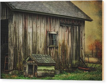 Wood Print featuring the photograph The Big And The Small by Mary Timman