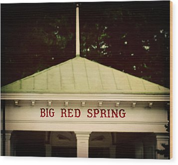The Big Red Spring Wood Print by Lisa Russo