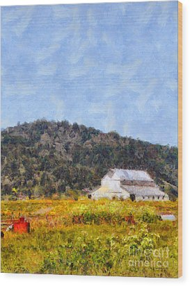 The Big White Barn At Point Reyes California . 7d15933 Wood Print by Wingsdomain Art and Photography