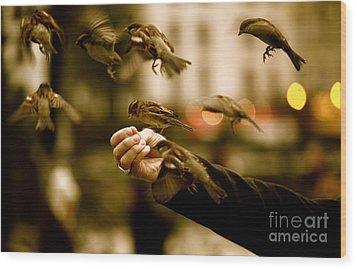 The Birds Wood Print by Zarija Pavikevik