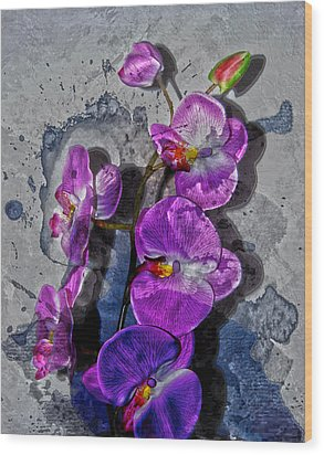 The Blue Orchid  Wood Print by Jerry Cordeiro