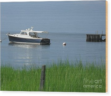 The Boat Wood Print by Beth Saffer