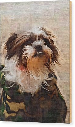 The Camo Makes The Dog Wood Print by Kathy Clark