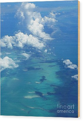 The Caribbean Sea From On High Wood Print by Anne Gordon