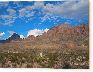 The Chisos Mountains Big Bend Texas Wood Print by Gregory G Dimijian MD