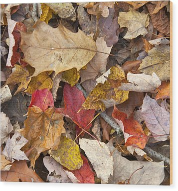 The Color Of Fall Wood Print by George Hawkins