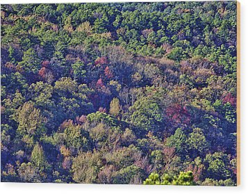 The Colors Of Autumn Wood Print by Douglas Barnard
