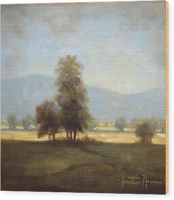 The Cove Wood Print by Jonathan Howe