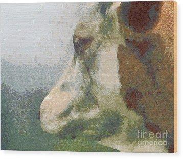 The Cow Portrait Wood Print by Odon Czintos