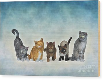 The Cute Ones Wood Print by Jutta Maria Pusl