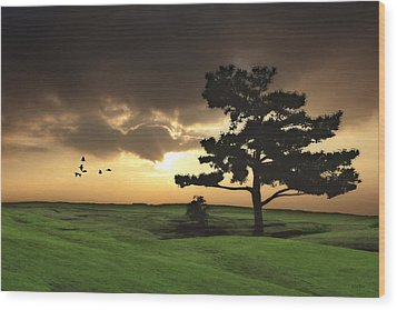 The Day Is Done Wood Print by Tom York Images