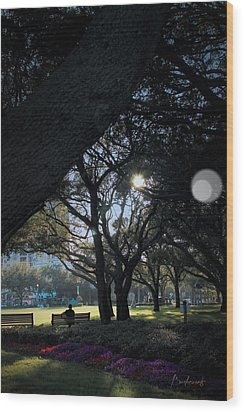 The Day's Reflection Limited Edition Bodecoarts Wood Print by Robin Lewis