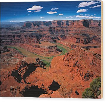 The Dead Horse Point State Park Wood Print by Daniel Chui