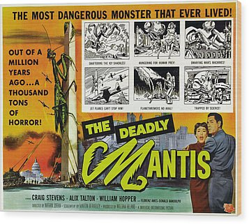 The Deadly Mantis, Bottom Right Wood Print by Everett