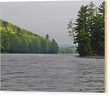 The Delaware River Wood Print by Bill Cannon