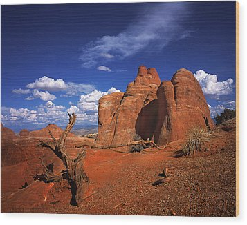 The Devils Garden In Arches National Park Wood Print by Daniel Chui