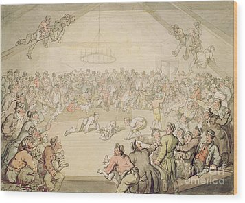 The Dog Fight Wood Print by Thomas Rowlandson