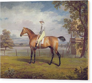 The Duke Of Hamilton's Disguise With Jockey Up Wood Print by George Garrard
