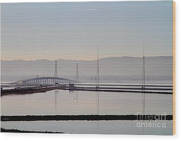 The Dumbarton Bridge In The Bay Area Viewed Through Coyote Hills California . 7d10961 Wood Print by Wingsdomain Art and Photography