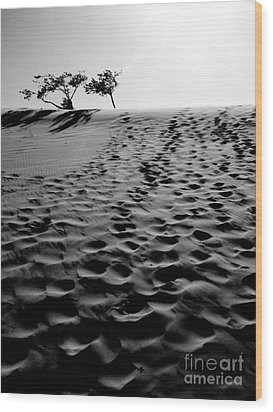 The Dunes At Dusk Wood Print by Tara Turner