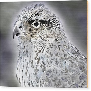 The Eye Of An Eagle  Wood Print by Yvonne Scott