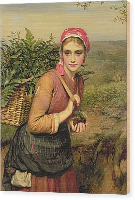 The Fern Gatherer Wood Print by Charles Sillem Lidderdale