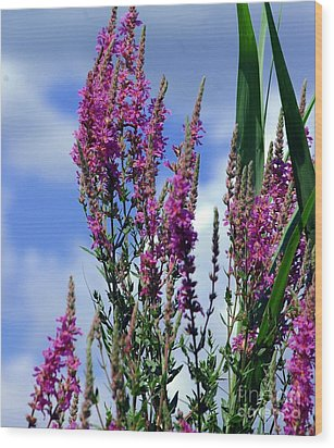 The Flowers Praise Him Wood Print by Kathleen Struckle