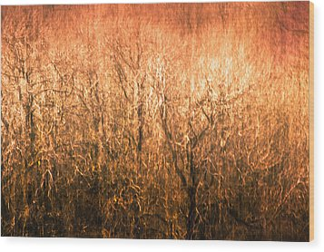 The Forest Fire Wood Print by Justin Albrecht