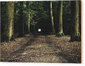 The Forest Tunnel Wood Print