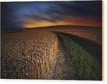 Wood Print featuring the photograph The Forgotten Path by John Chivers