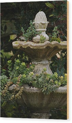 The Fountain Painterly Wood Print by Ernie Echols
