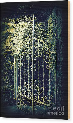 The Gate In The Grotto Of The Redemption Iowa Wood Print by Susanne Van Hulst